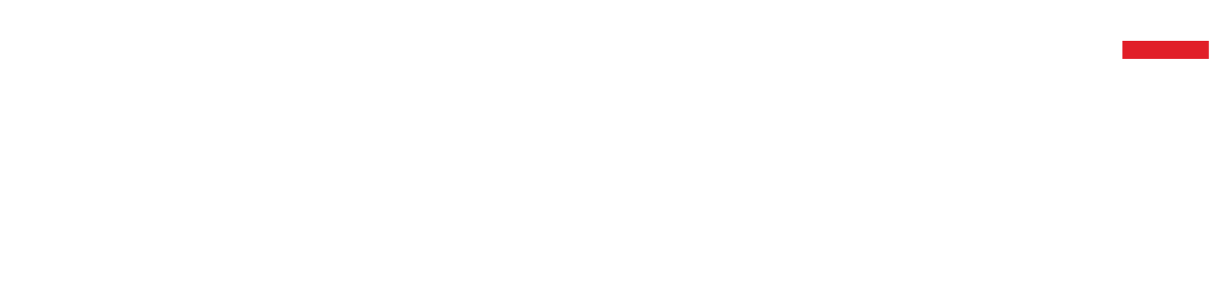Dust Value Logo White